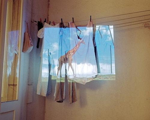 marlon kowalski photographer photography