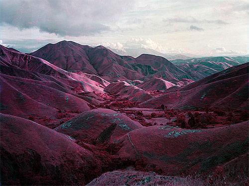 richard mosse photographer photography quick infrared film kodak aerochrome congo