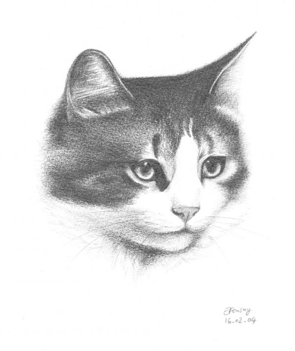 Drawings Of Cats And People S Faces Booooooom Create Inspire Community Art Design Music Film Photo Projects