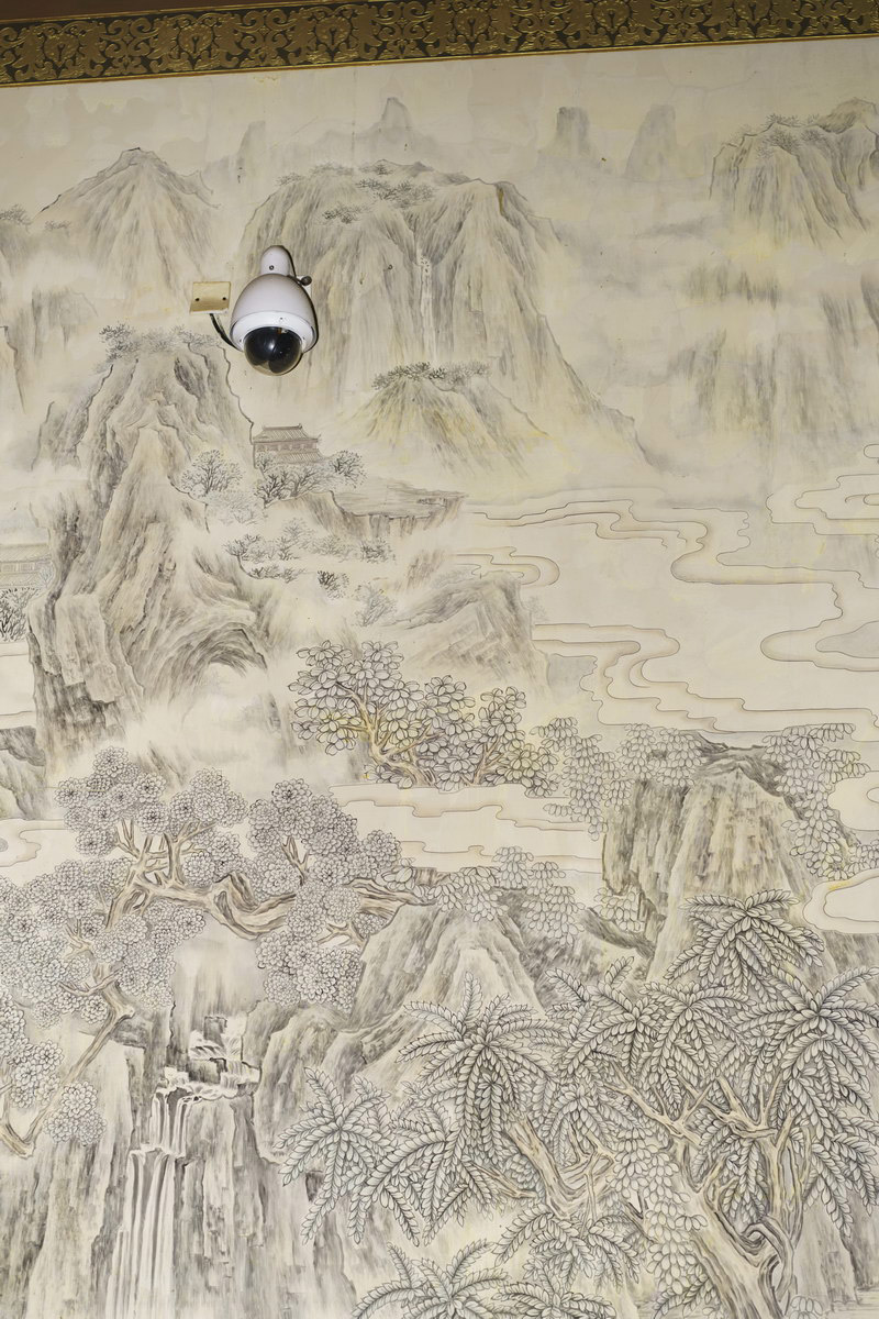 Yishu Wang