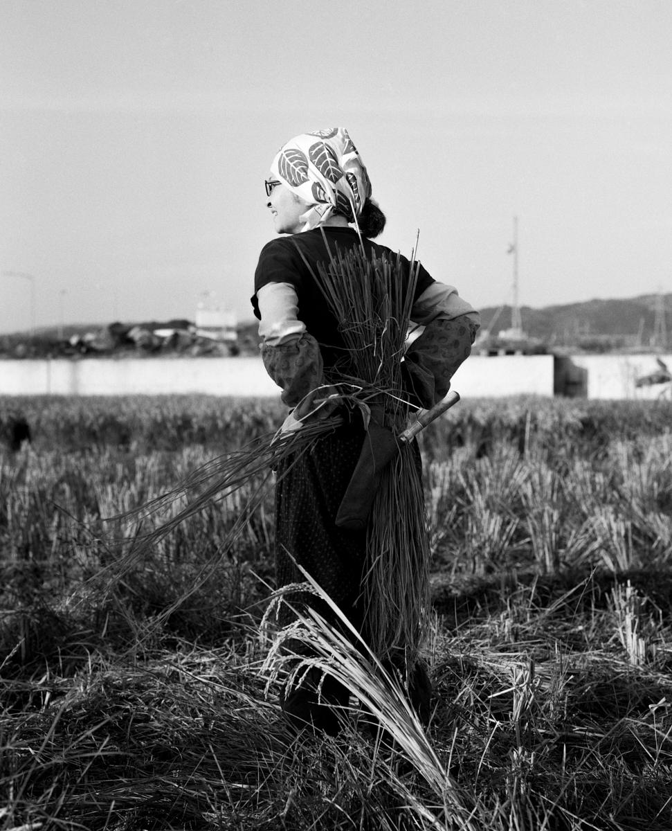 Fotógrafa em Destaque: Tess Ayano Artes & contextos tessayano 006