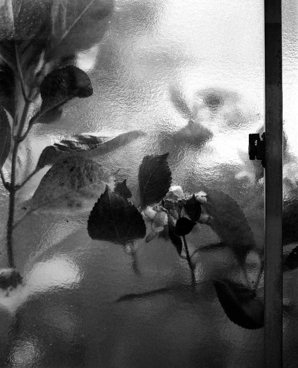 Fotógrafa em Destaque: Tess Ayano Artes & contextos tessayano 014