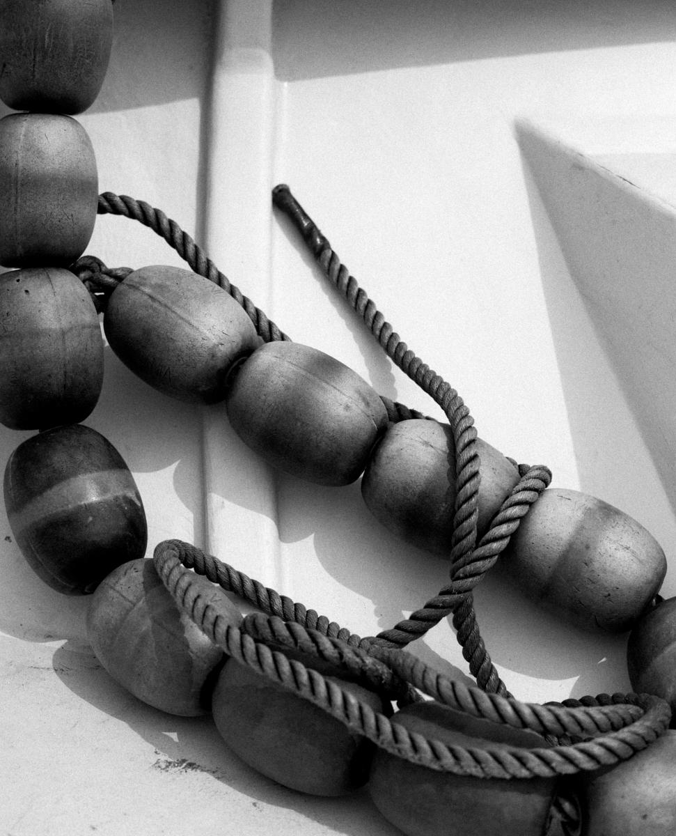 Fotógrafa em Destaque: Tess Ayano Artes & contextos tessayano 015